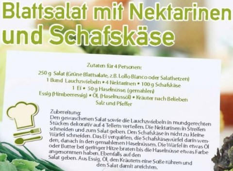 Blattsalat mit Nektarinen und Schafskäse